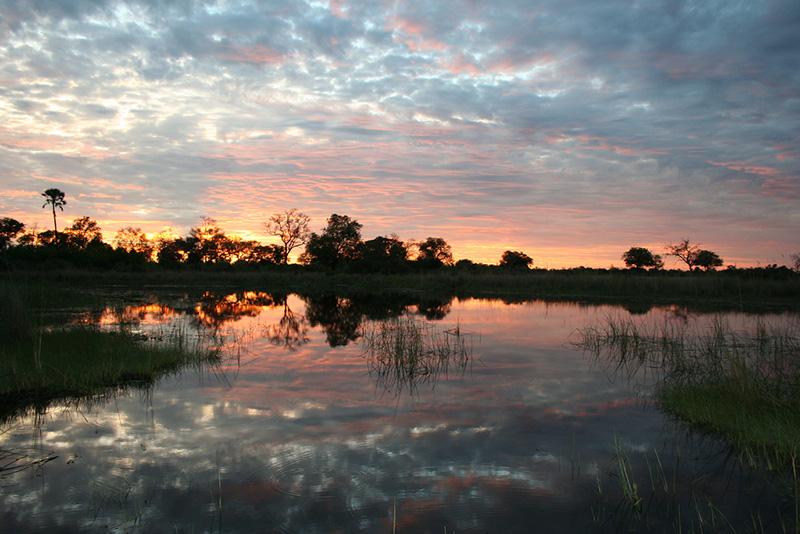 Viaje al delta del Okawango
