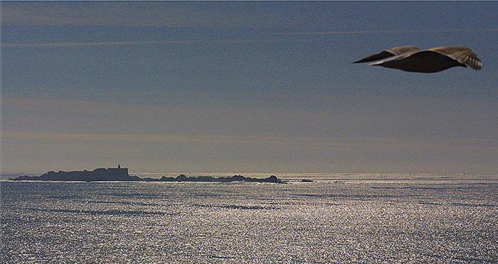 Isla Lobeira na costa da morte en galicia