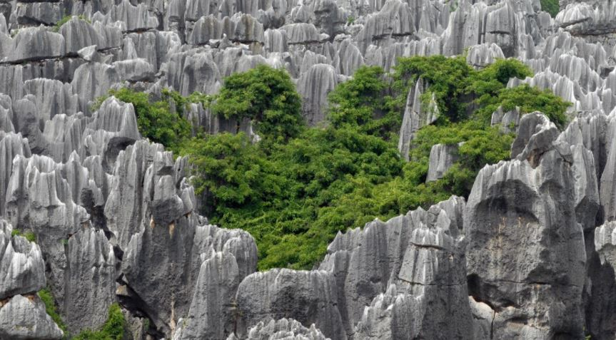 Bosque de piedra en Shilin China