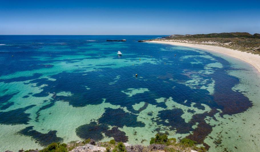 Mar coral australia