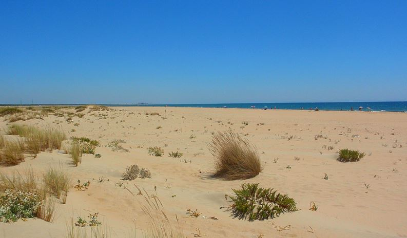 Playa De Nueva Umbria