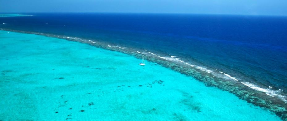 Arrecife de la Isla Pequena Caiman