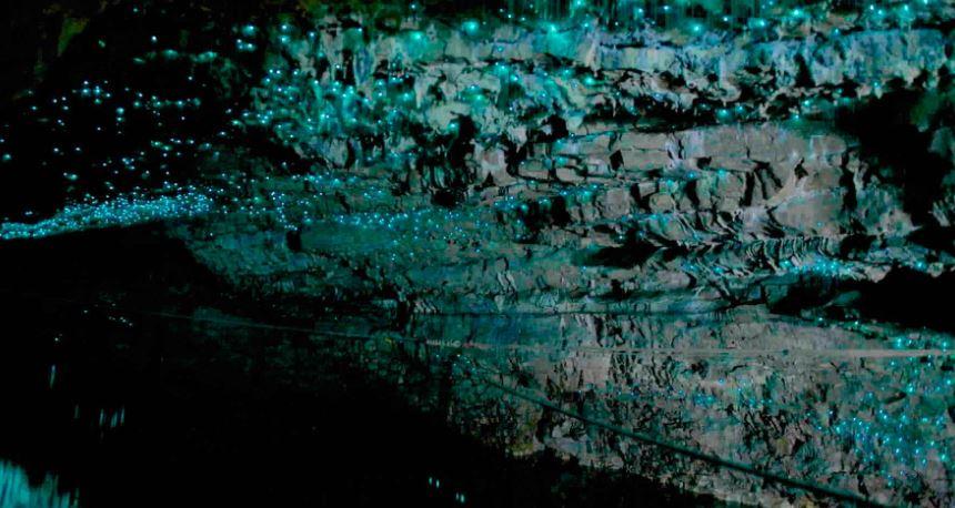 imagenes de lugares Cuevas de Waitomo