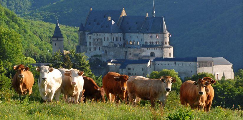 Ruta de los 7 castillos de Luxemburgo